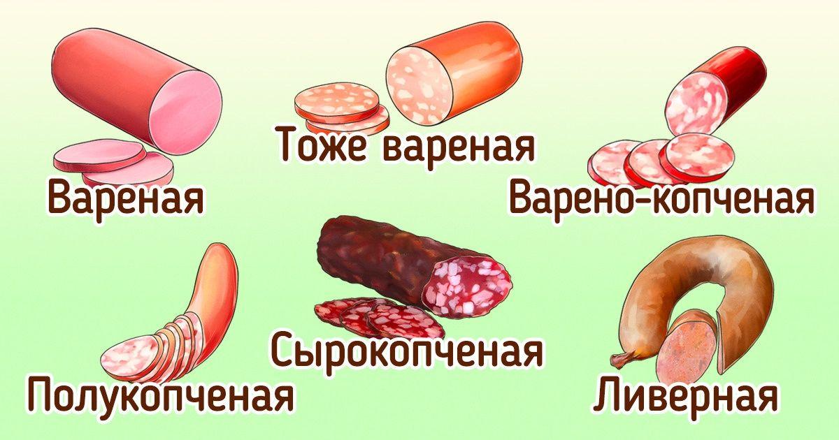 Какие бывают виды колбас